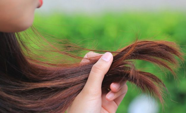 Foods Containing Biotin and Zinc for Faster Hair Growth