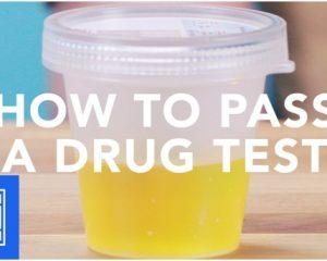 Simpliest Ways To Pass Urine Drug Test By Using Fake Urine Kit