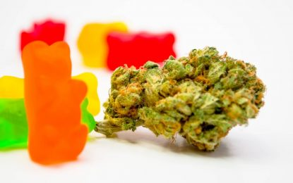 The Best CBD Gummies
