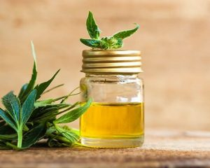 CBD Oil Benefits On Human Health