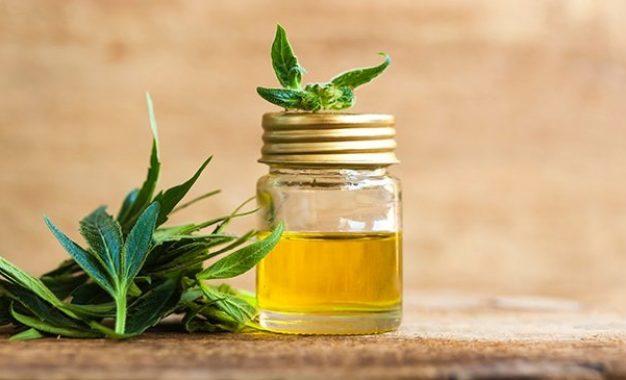 CBD Oil Benefits On Human Health
