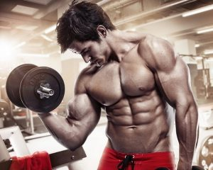 Steroids for building muscles with high success rates
