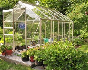 Two amazing uses of halls greenhouses