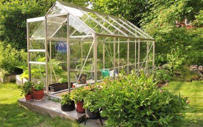 Two amazing uses of halls greenhouses